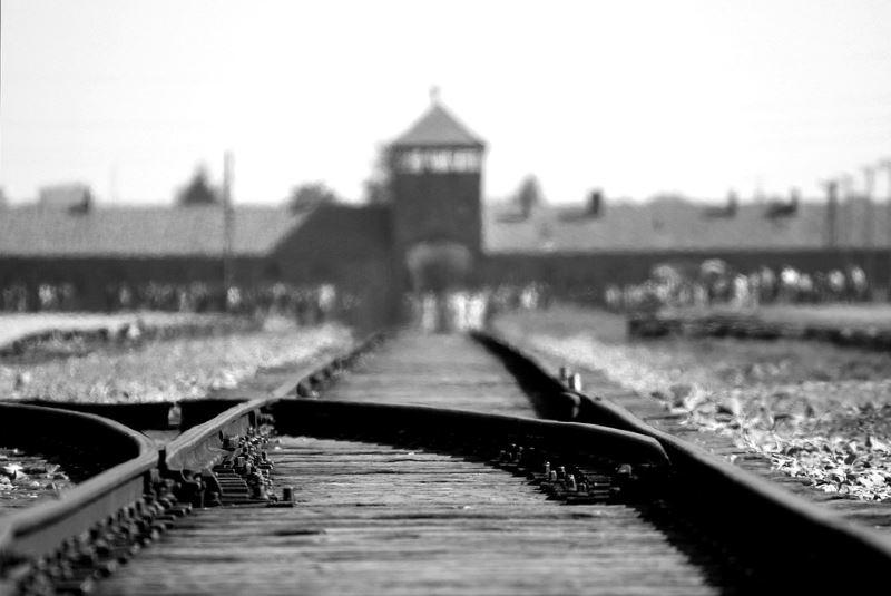 הצעת חוק חדשה. אושוויץ|צילום: pixabay.com