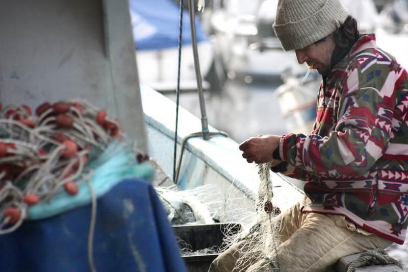 הצ'יפס בדרך. דייג| צילום: pixabay.com