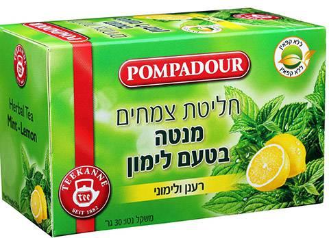 חליטת מנטה בטעם לימון. פומפדור|צילום: אפרת אשל