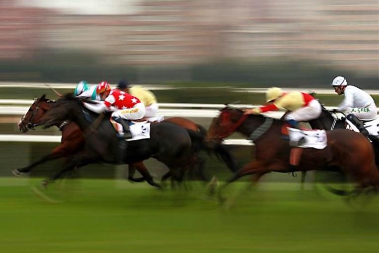 יבוטלו ההימורים על מרוצי סוסים