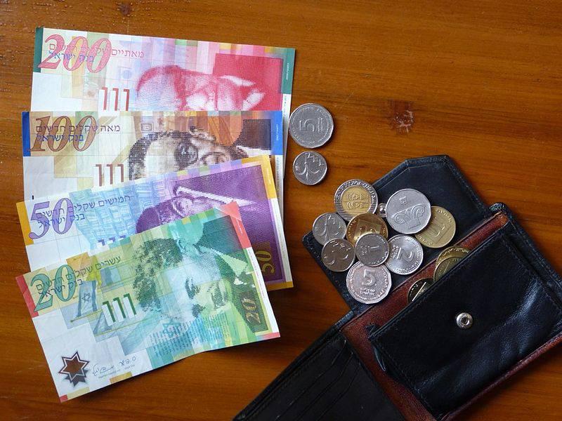 "כסף|צילום: יח""צ"